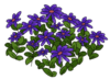 Purple Flower Bed WOT.png