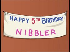 Nibbler Birthday.jpg
