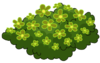 Green Flower Bed WOT.png