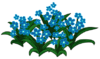 Blue Flowers WOT.png
